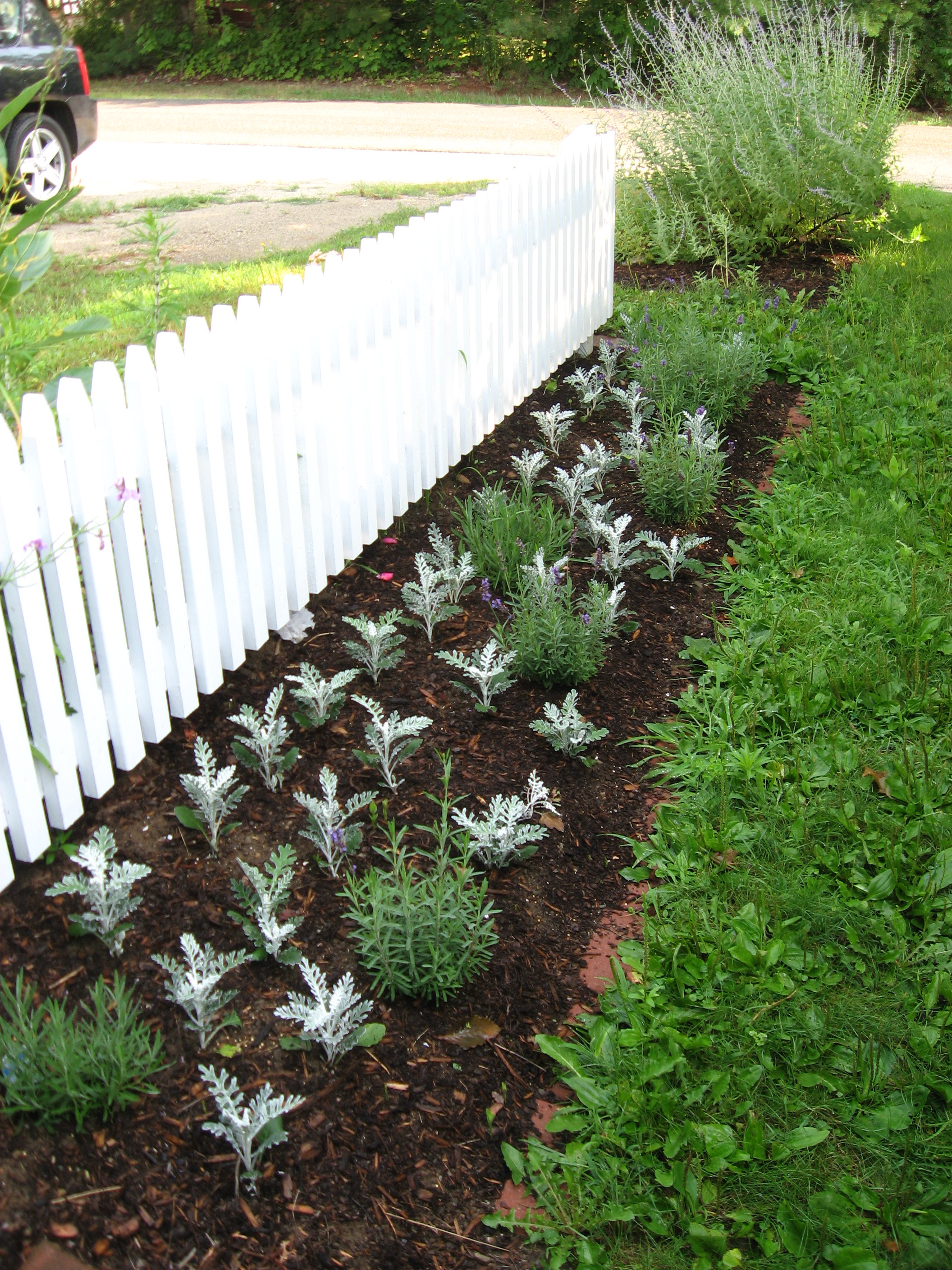 Picket Fence Beds | Beso.com