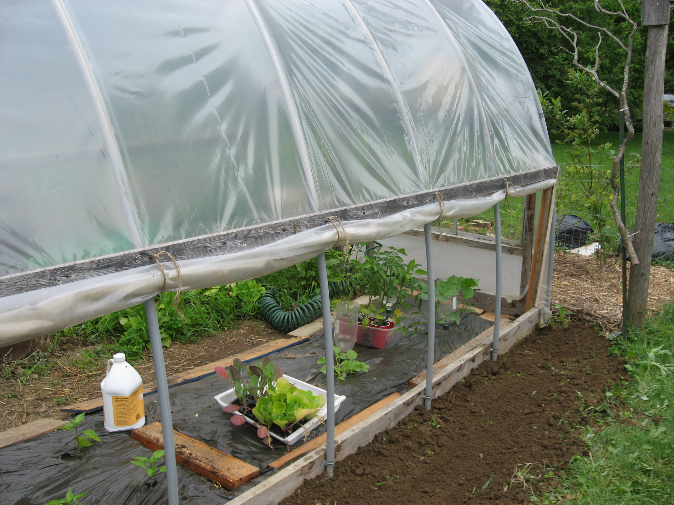 Citaten Hoop House : Hoophouse henbogle page